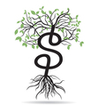 money tree-growing dollars vector image vector image
