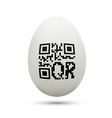 qr code on chicken egg vector image