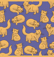 red cat seamless pattern vector image vector image
