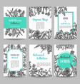 set of card with hand drawn herbs and wild flowers vector image