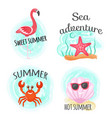hot summer and sea adventure ocean bottom diving vector image