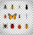 insects set on transparent background vector image vector image