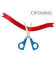 open - scissors and tape vector image vector image