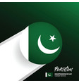 pakistan independence day background vector image