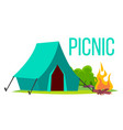 picnic bonfire and tent summer vacation vector image vector image