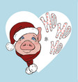 pig wearing a scarf and santa hat vector image vector image