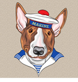 sailor dog BullTerrier breed vector image vector image