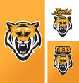 Tiger mascot for sport teams vector image vector image