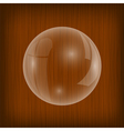 Transparent Soap Water Bubble vector image vector image