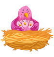 Birds living in the nest vector image vector image