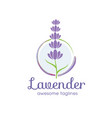 lavender flower logo for beauty and cosmetic vector image