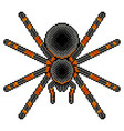 pixel art tarantula spider detailed isolated vector image