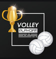 volleyball sport balloon and trophy vector image vector image