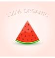 100 Organic Watermelon Slice vector image