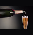 champagne bottle and wineglass vector image vector image