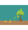 Evolution of money tree vector image vector image