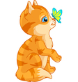 kitten and butterfly vector image vector image