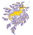 leafy sea dragon vector image vector image