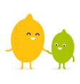 lemon lime cute fruit character vector image vector image