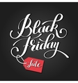 black friday design sale discount advertising vector image