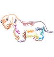 colorful decorative standing portrait of sealyham vector image vector image