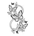 eight contour butterflies vector image