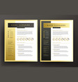 expert cv resume template in black and gold vector image vector image