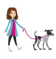 girl walking with a dog on a leash vector image