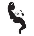 panda lifting weight vector image vector image