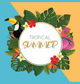 tropical summer round frame design vector image