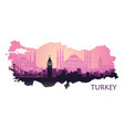 landscape of the turkish city of istanbul vector image vector image