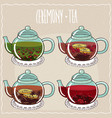set of different brewed flower and berry teas vector image vector image
