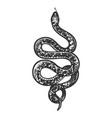 snake tattoo sketch vector image