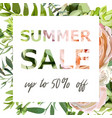 summer sale banner poster background vector image