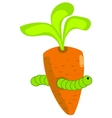 the caterpillar in carrot vector image