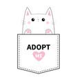 adopt me kitten sitting in pocket paw print vector image vector image