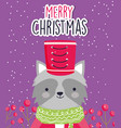 merry christmas celebration cute raccoon with hat vector image
