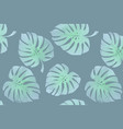 tropical leaves monstera pattern vector image