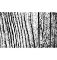 wood grunge texture vector image