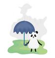 cute bear panda with umbrella character vector image