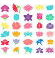 Different floral designs vector image vector image