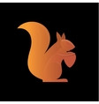 Orange Squirrel on the gradient background vector image