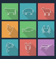 set of icons of animals vector image vector image