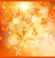 autumn background with natural leaves and bright vector image vector image