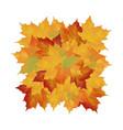 autumn fallen leaves leafs element floral vector image vector image