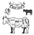 beef cuts butcher diagram cow on white background vector image vector image