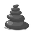 spa stones for medical therapy vector image