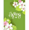 spring background with flowers and lettering vector image vector image