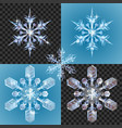 christmas snowflake design elements vector image vector image