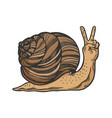 fantastic snail hand animal sketch engraving vector image vector image